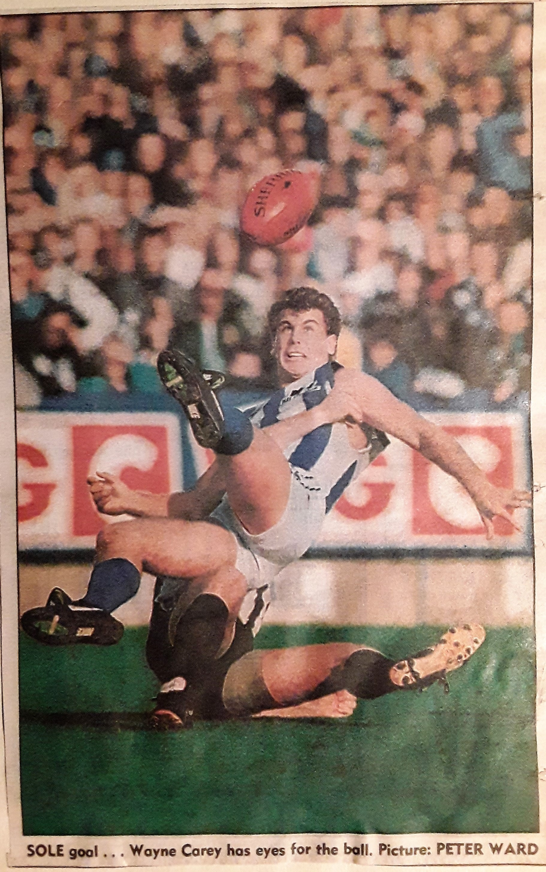 1993 05 29 Carey.jpg