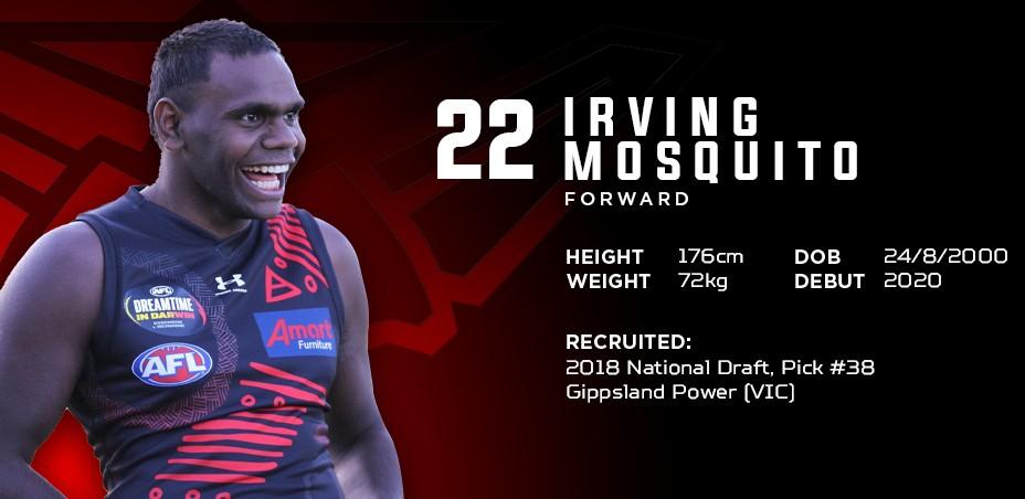 22 - Irving Mosquito.jpg