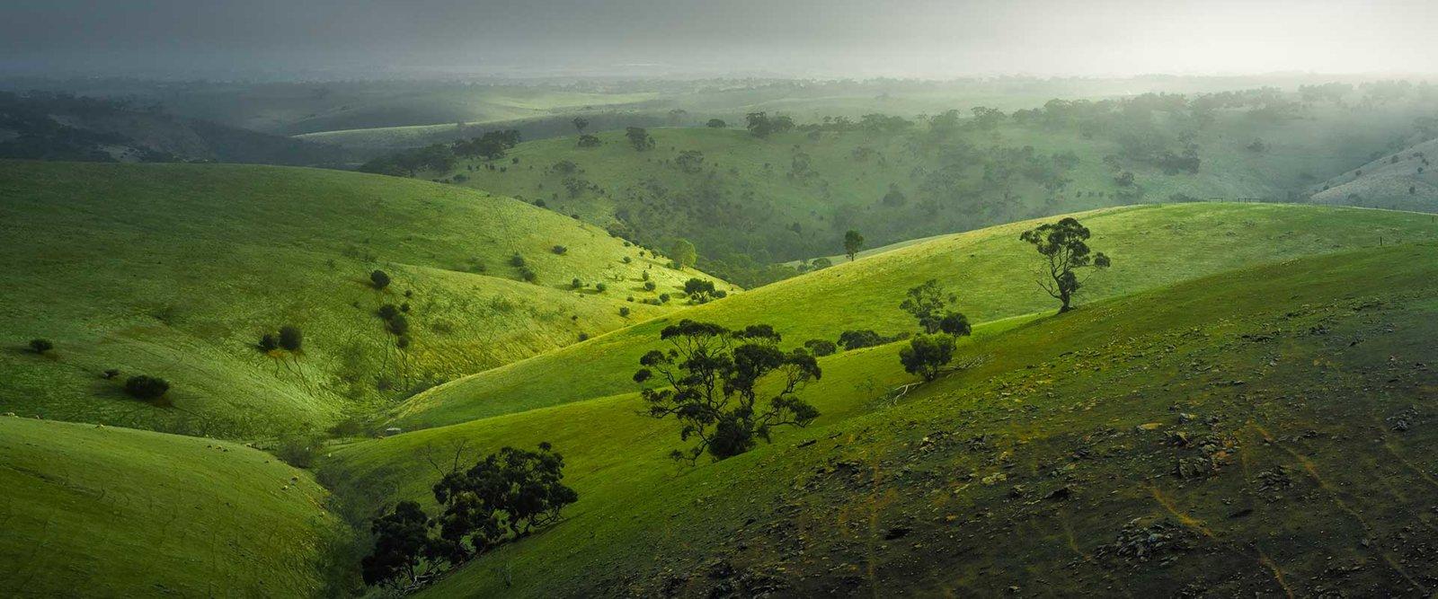 Adelaide HIlls Landscape.jpg