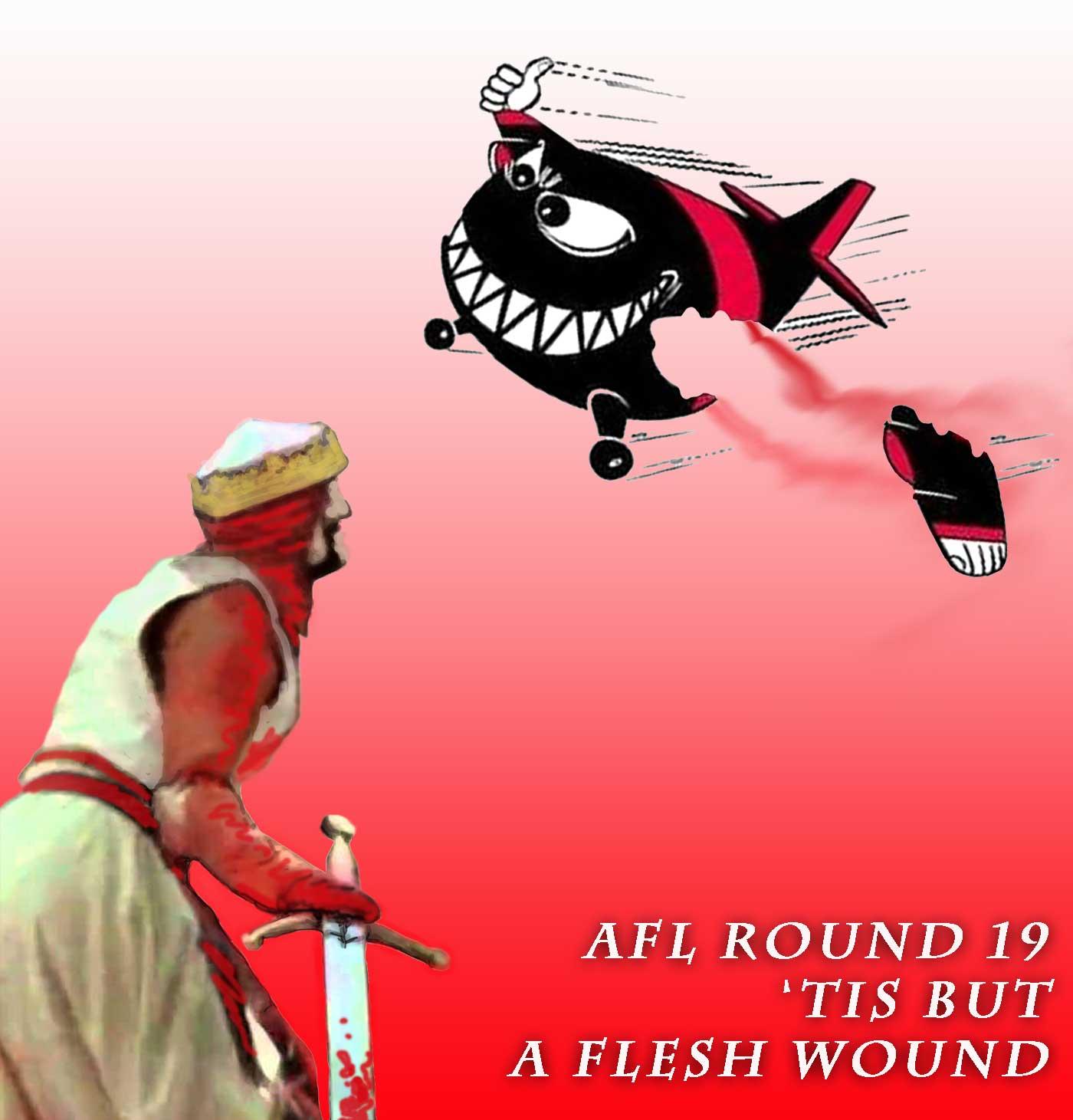 AFL-Round-19-Flesh-Wound.jpg