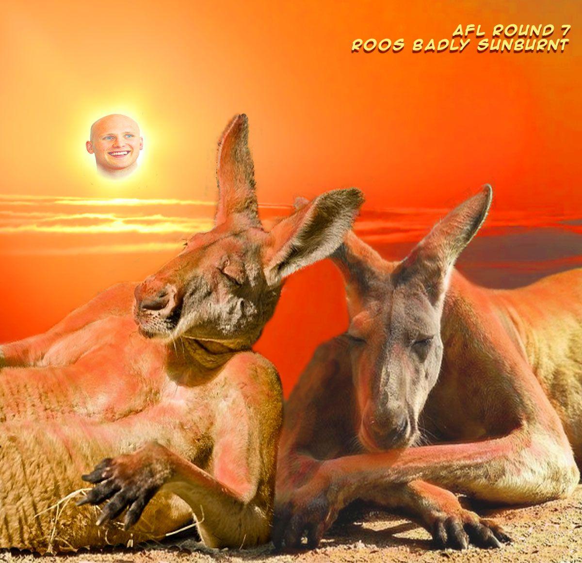 AFL-Round-7-Roos-Badly-Sunburnt.jpg