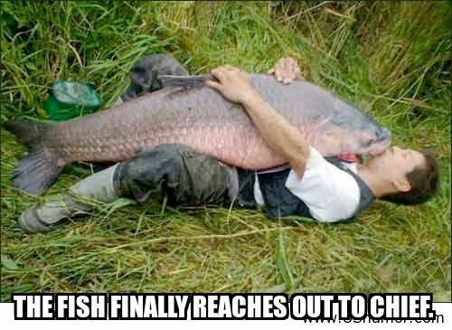 Big fish .jpg