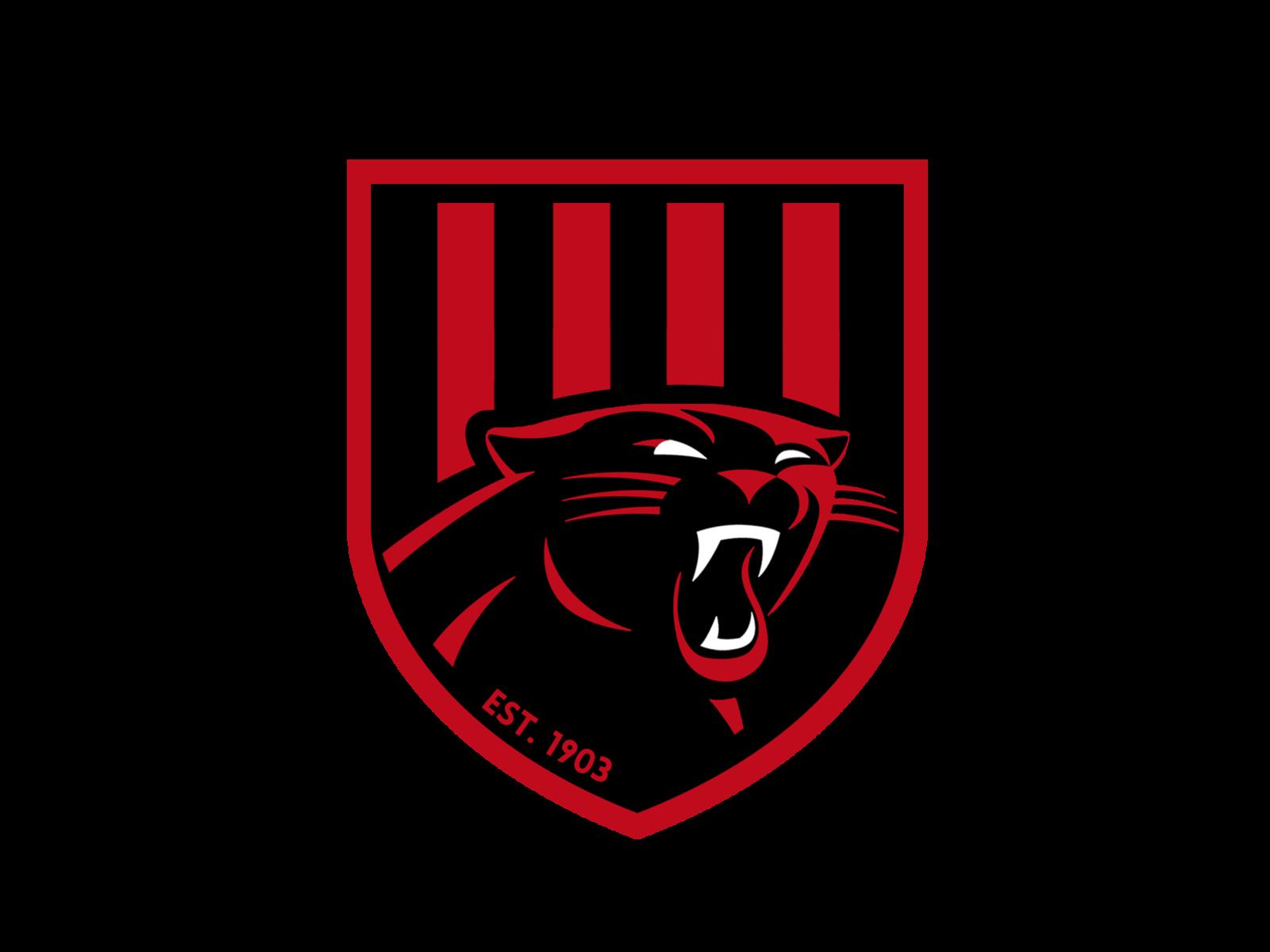 blackburn logo8 black text.png