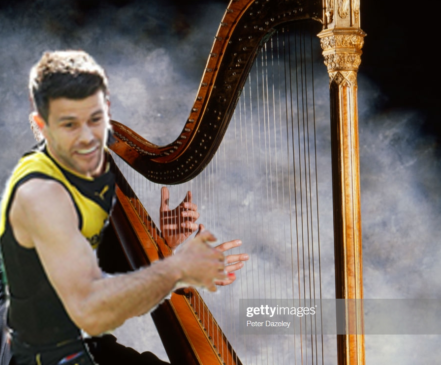 cotchinharp.png