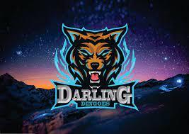 Darling Dingoes.jpg