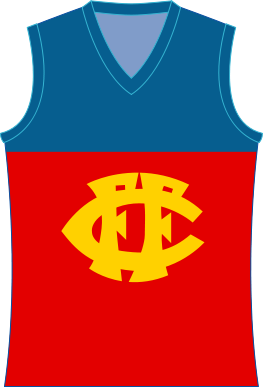 fitzroy lions.png