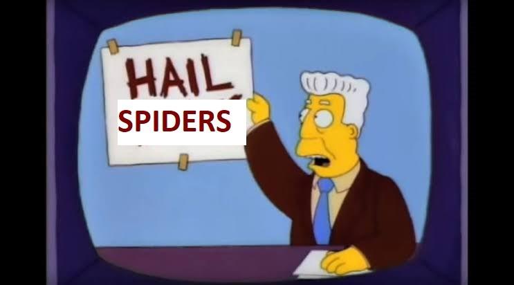 HailSpiders.jpg