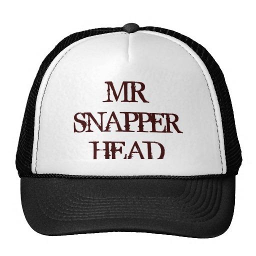 mr_snapper_head_mesh_hat-r2a32f452cbc945d884c1c19fe91f3798_v9wfy_8byvr_512.jpg