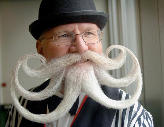 octopus-moustache.jpg
