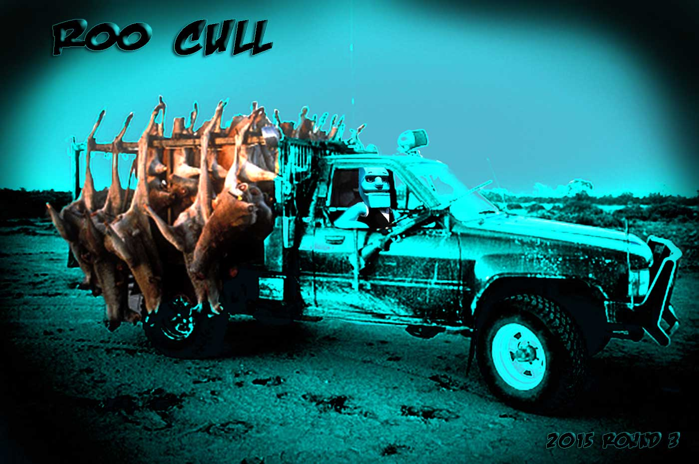 Round-3-Roo-Cull.jpg