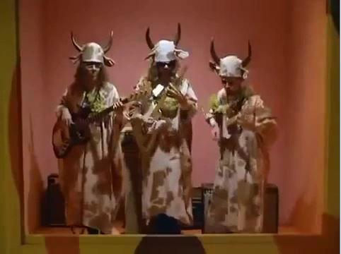 Sacred-cows.JPG.jpg