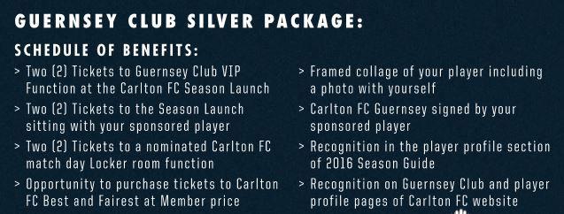 Silversponsorship.JPG