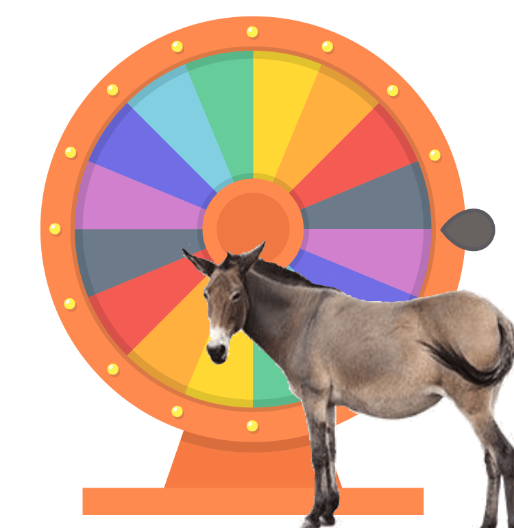spin-the-wheel.png