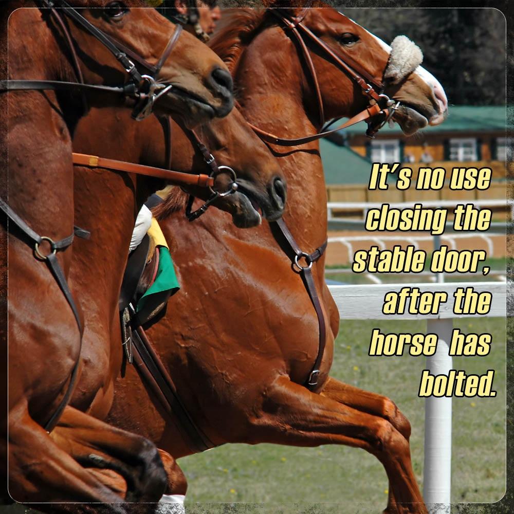 stable-door-horse-racing-meme.jpg