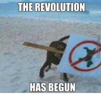 thumb_the-revolution-has-begun-the-dog-uprising-is-here-http-www-memecenter-com-fun-4257989-da...png