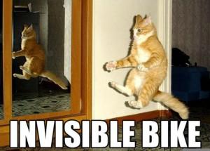 Invisible Bike Cat