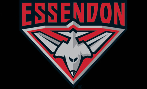 Essendon: THE REPLACEMENTS